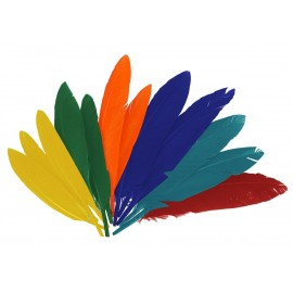 Plumas indio mix colores